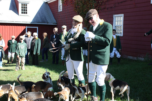Old Chatham Hunt Club beagling